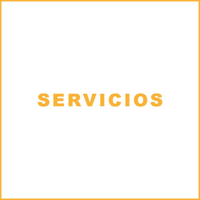 servicios texto-2